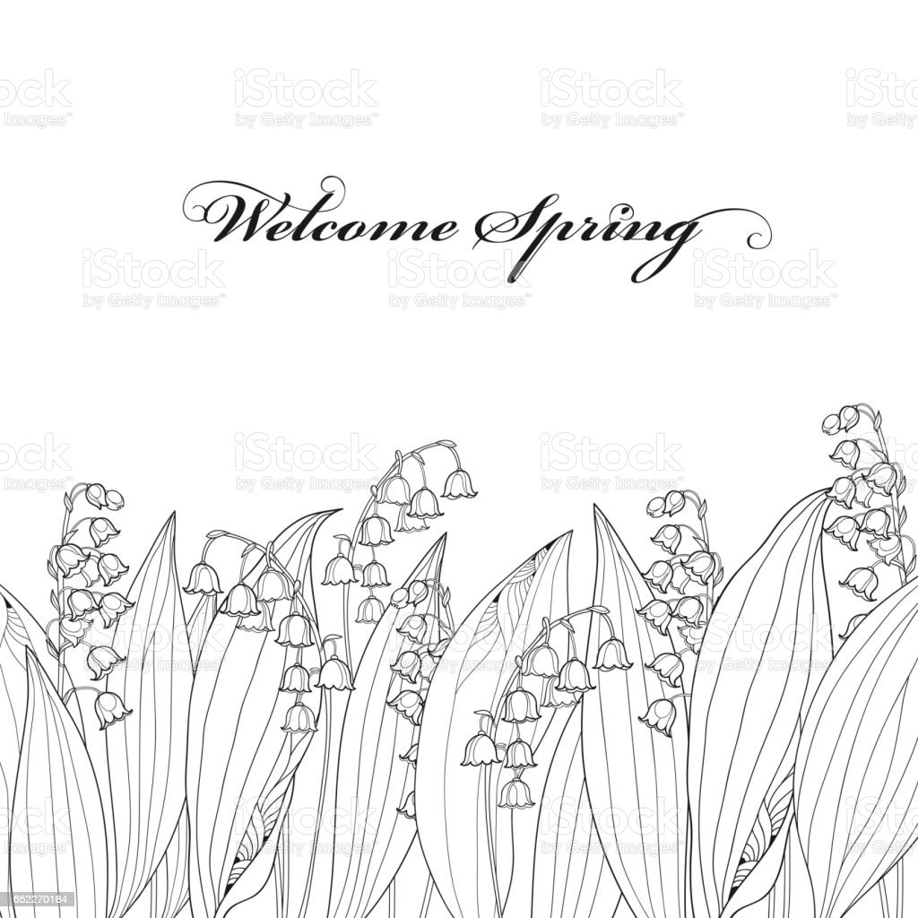 Border with Lily of the valley or Convallaria flower and leaf isolated. vector art illustration