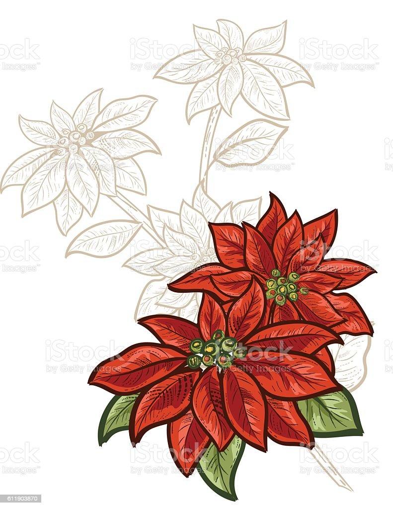 Botanical Christmas Plants Ornament vector art illustration