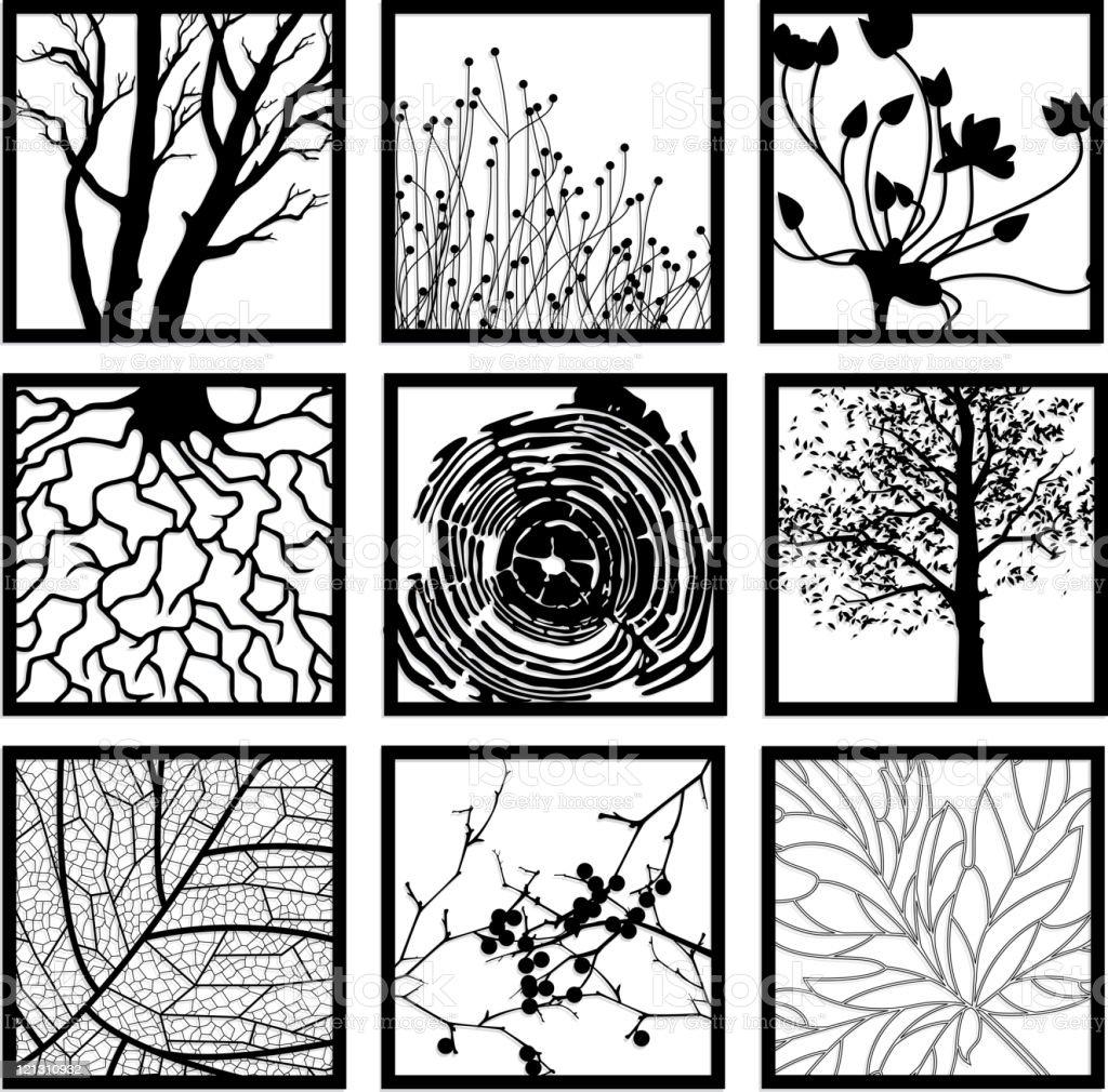 Botanical Design Elements vector art illustration