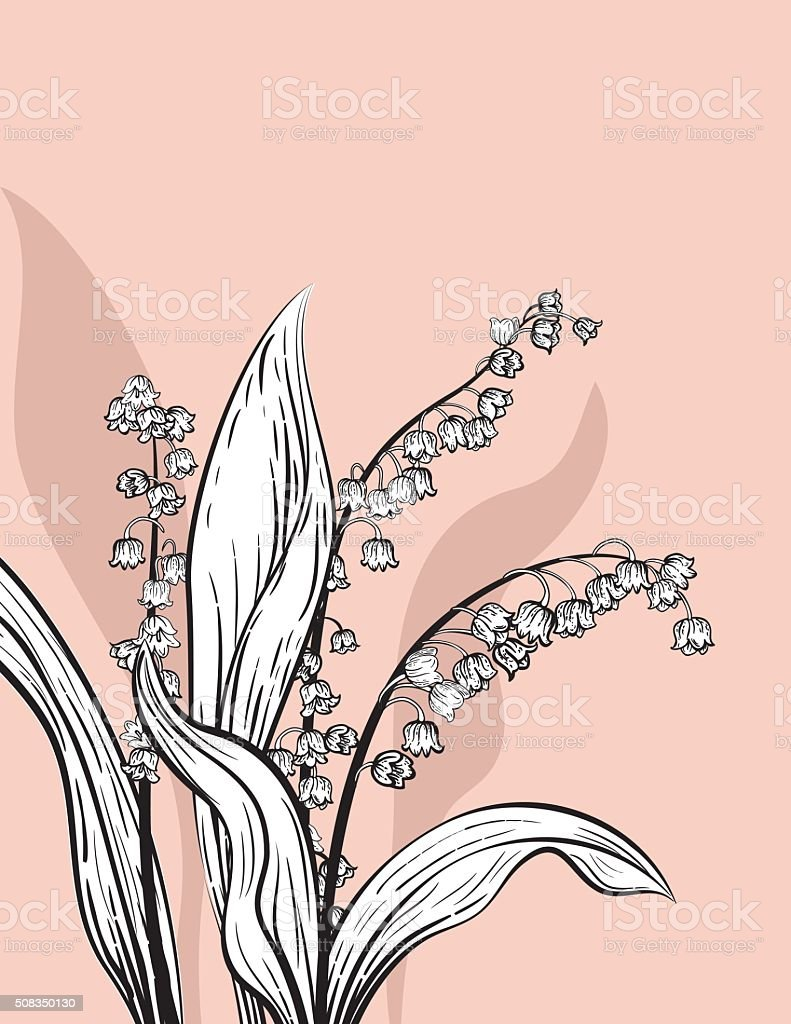 Botanical Flowers Card Template vector art illustration