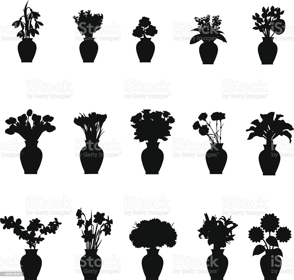 Bouquet different flowers in vase collection vector art illustration