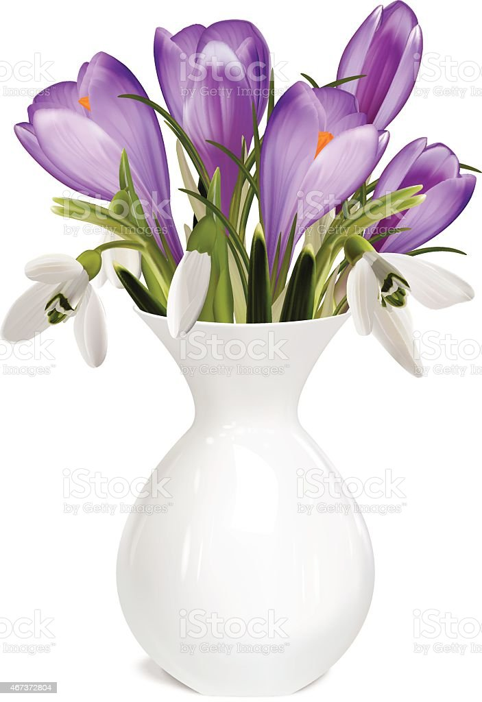 Bouquet of crocuses and snowdrops. Vector illustration vector art illustration