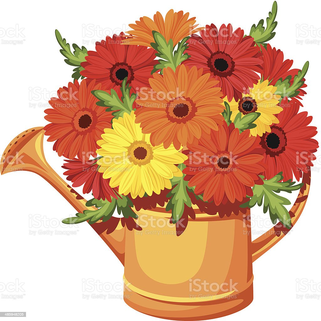 Bouquet of gerbera flowers in watering can. Vector illustration. vector art illustration