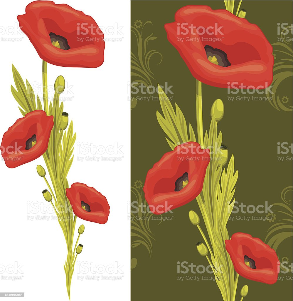 Bouquet of red poppies vector art illustration