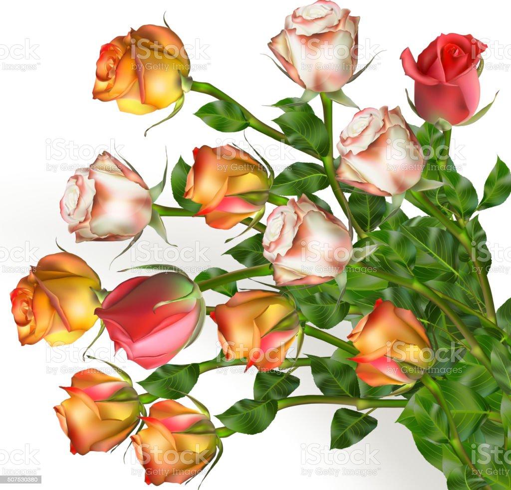 Bouquet of rose flowers on white. EPS 10 vector art illustration