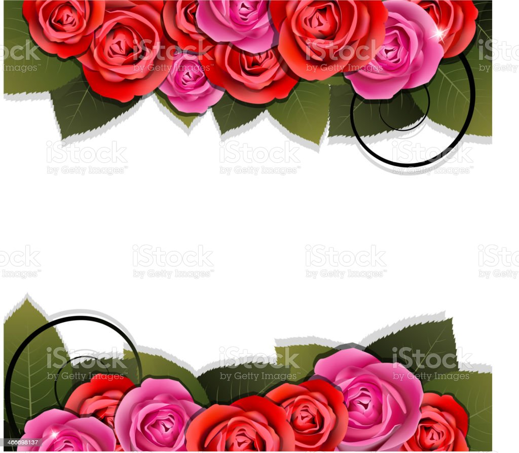 Bouquet of roses. royalty-free stock vector art