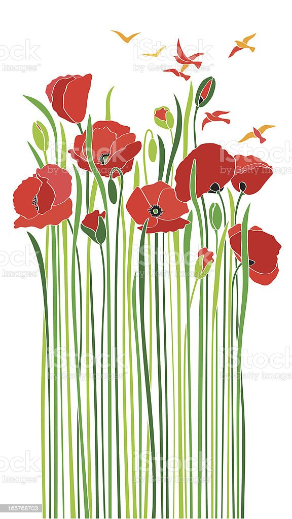 bouquet of scarlet poppies birds enjoying spring vector art illustration
