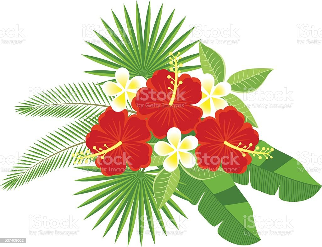 bouquet of tropical flowers and leaves vector art illustration