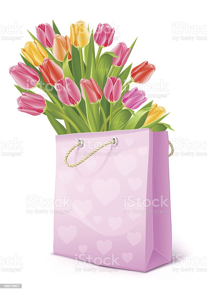 bouquet of tulip flowers in the bag royalty-free stock vector art