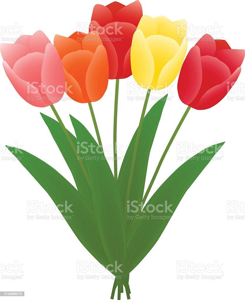 bouquet of tulips vector art illustration