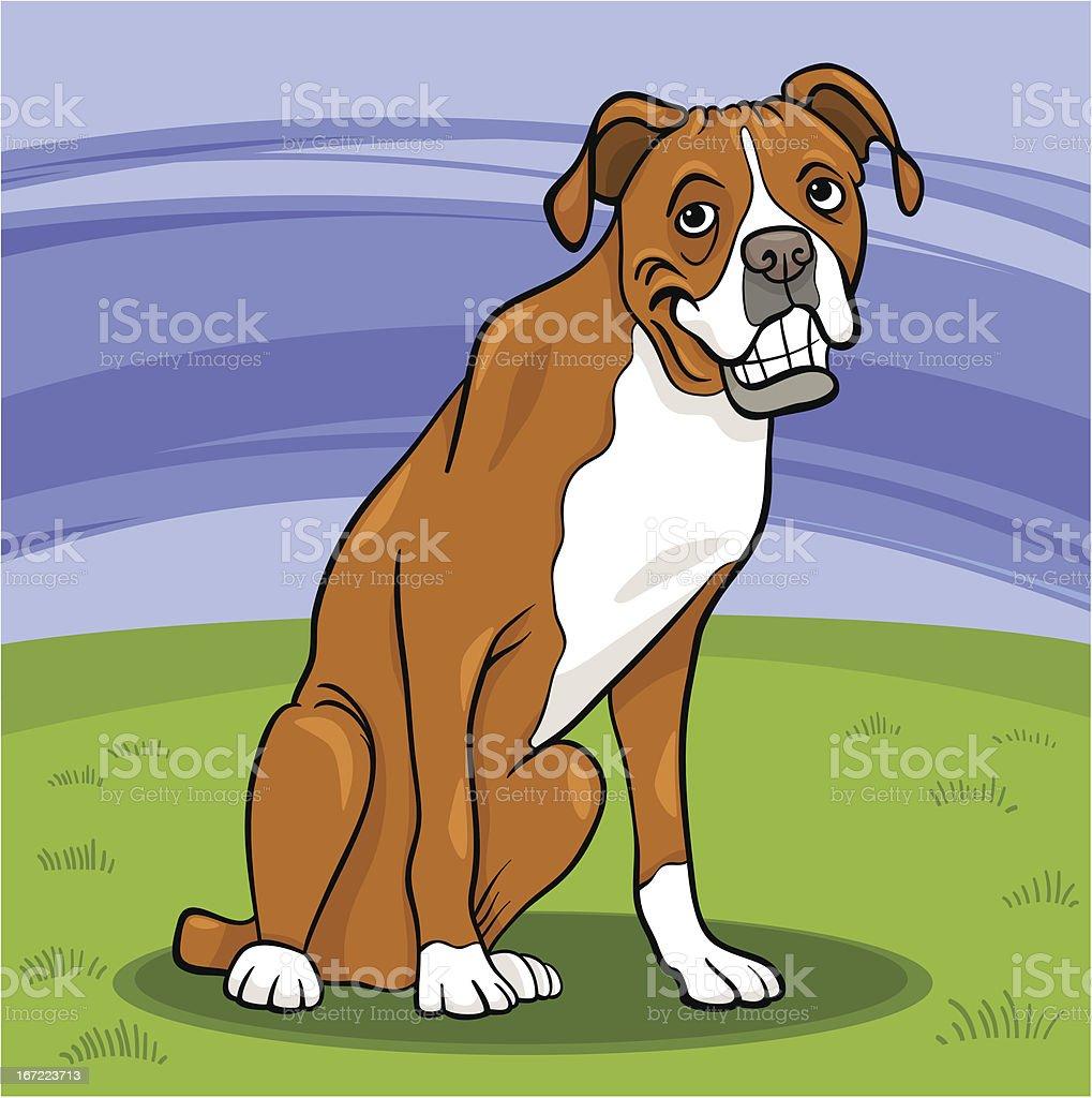boxer purebred dog cartoon illustration royalty-free stock vector art