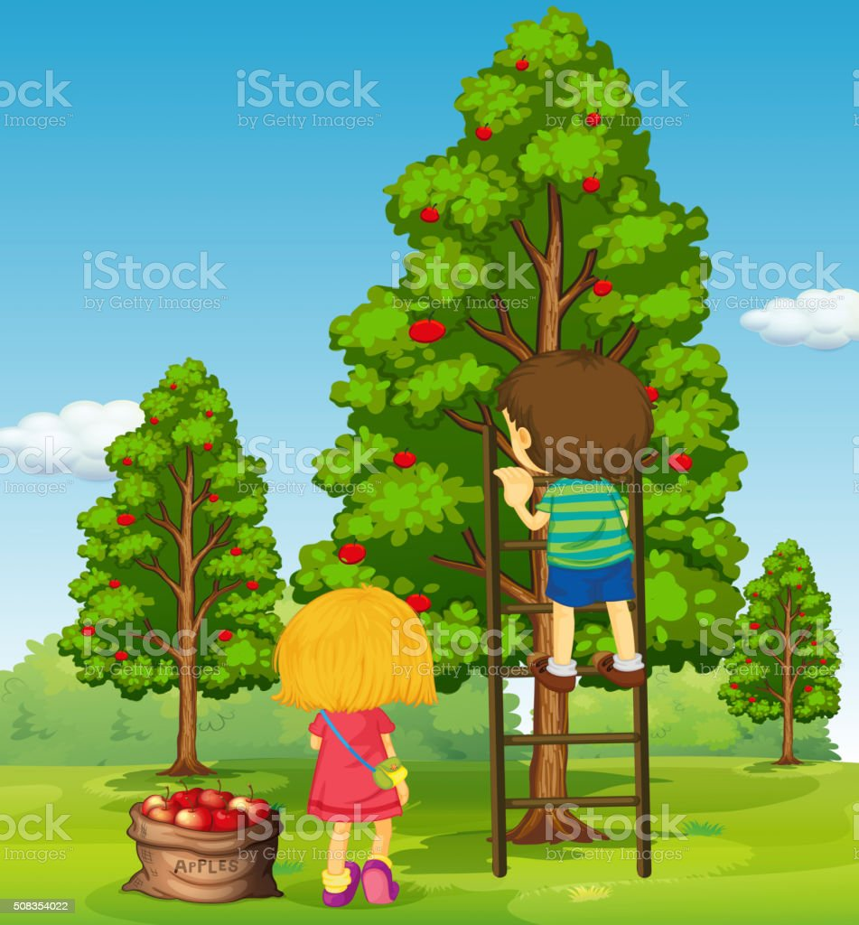 Boy and girl picking apples from the tree vector art illustration