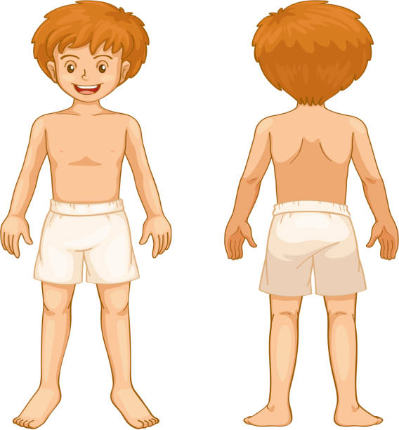 Anatomy Clipart For Kids
