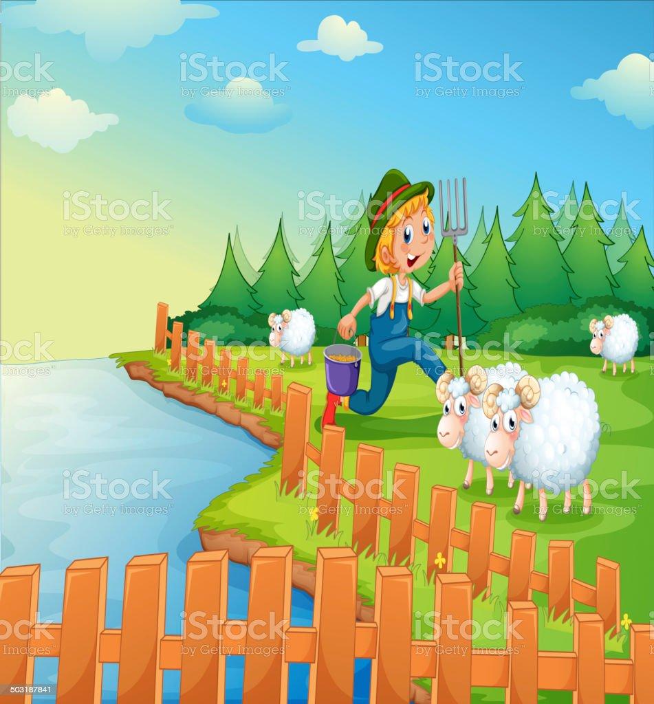 Boy feeding the sheeps royalty-free stock vector art