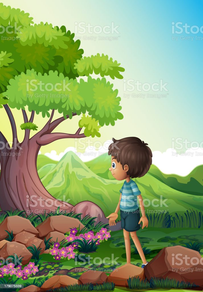 boy near the giant tree in  forest royalty-free stock vector art