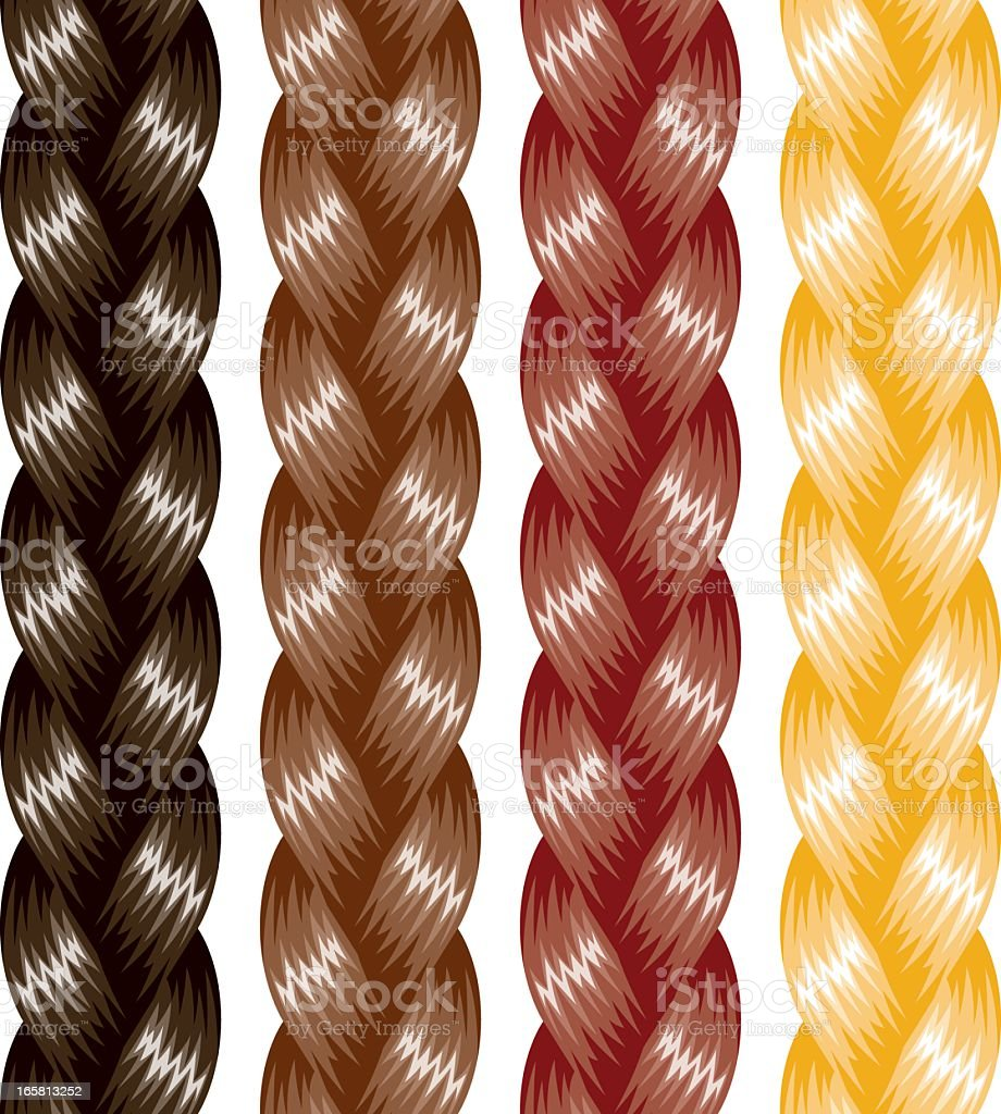 Braided Hair vector art illustration