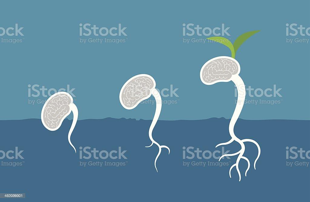 Brain Germinate vector art illustration