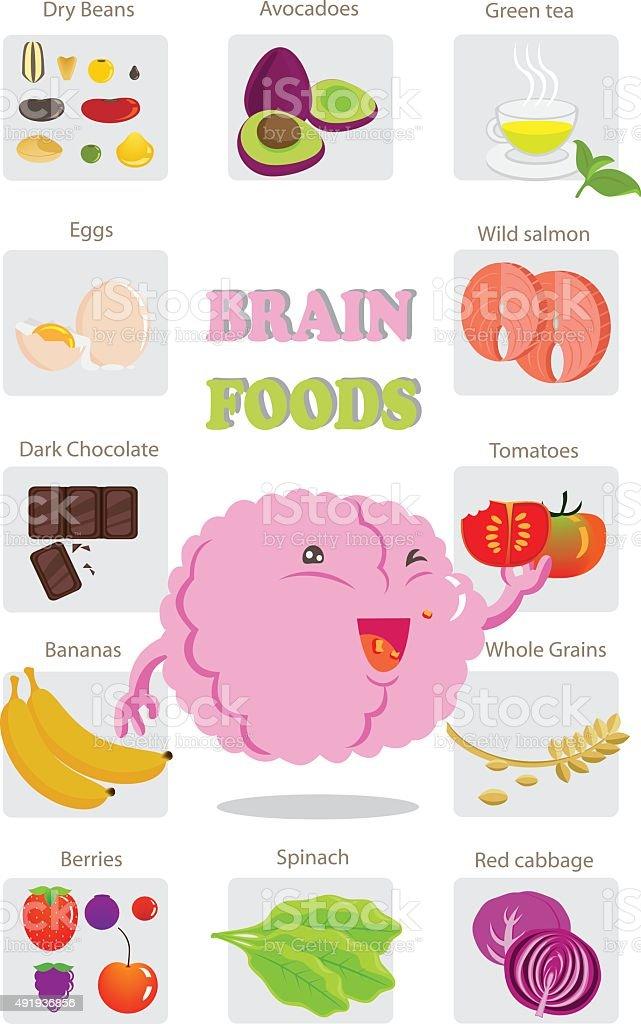 brain health food vector art illustration