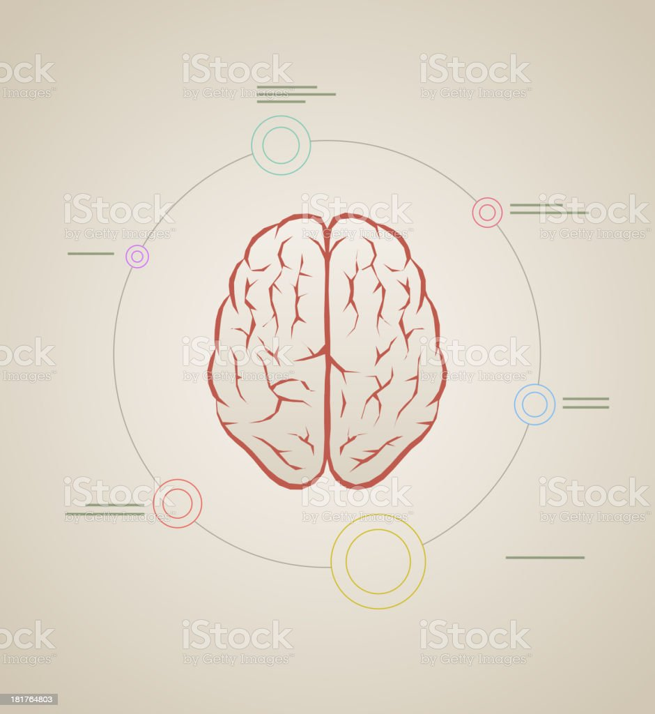 brain infographic template royalty-free stock vector art