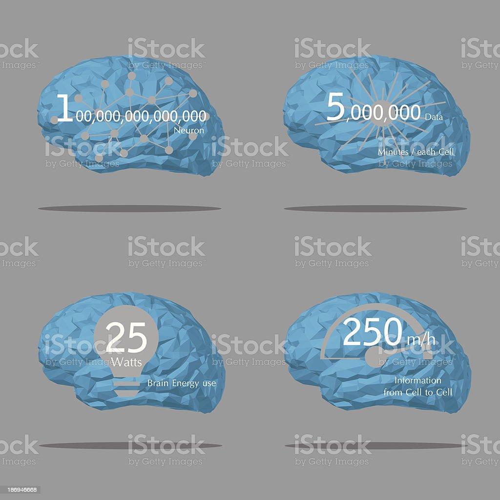 Brain information royalty-free stock vector art