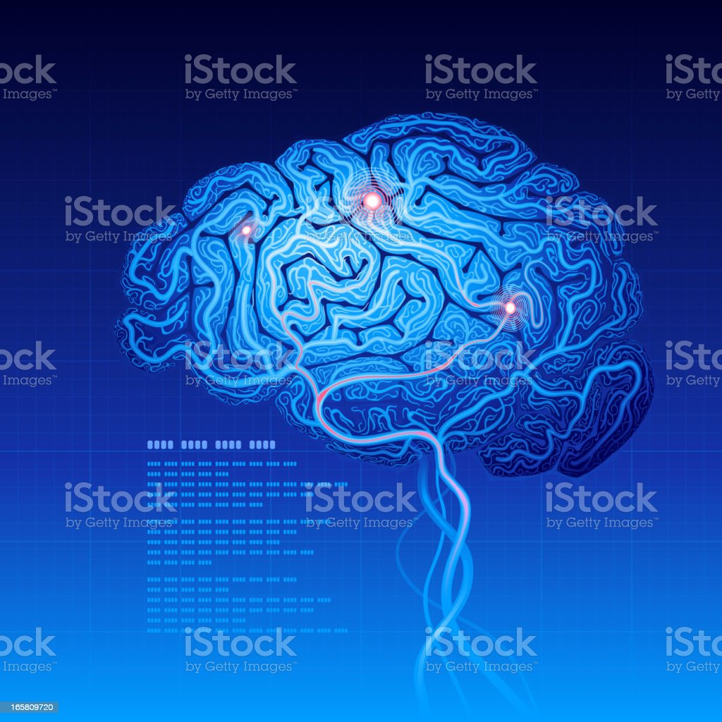 Brain royalty-free stock vector art