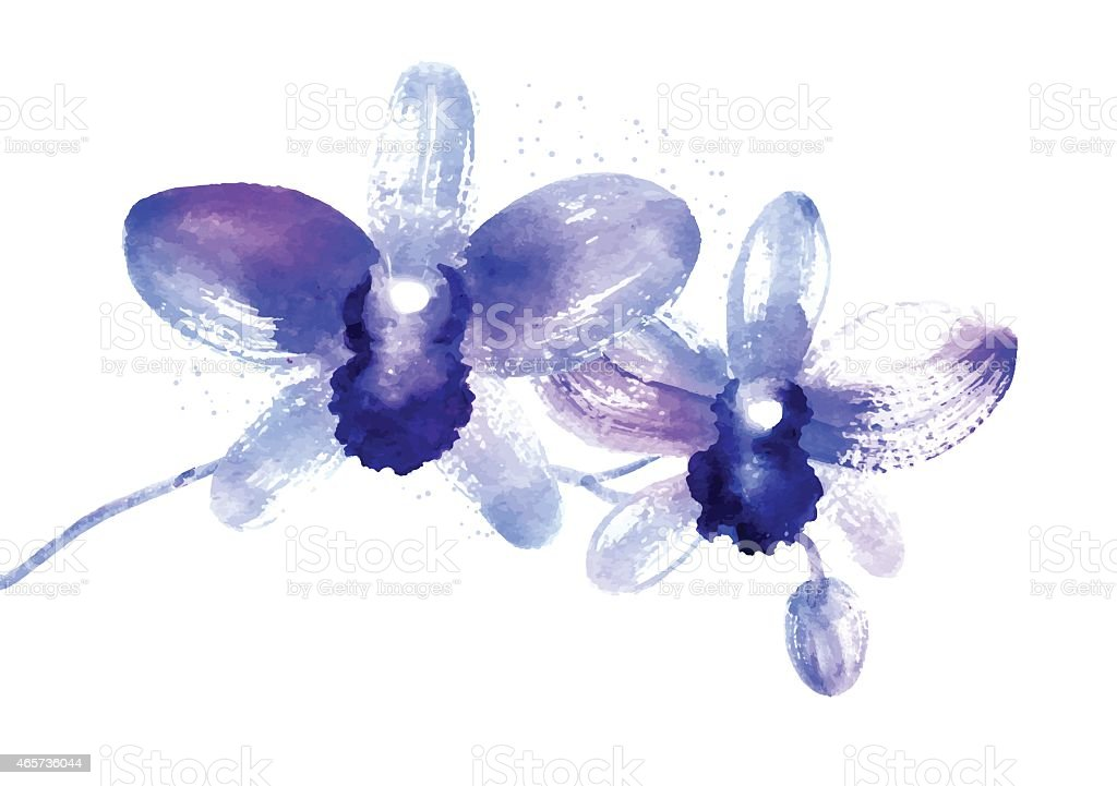 Branch of blue watercolor orchids vector art illustration