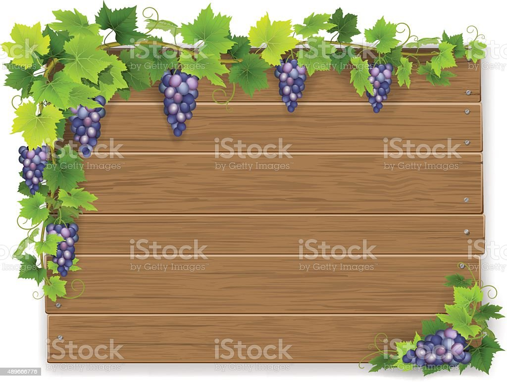branch of grapes on wooden sign vector art illustration