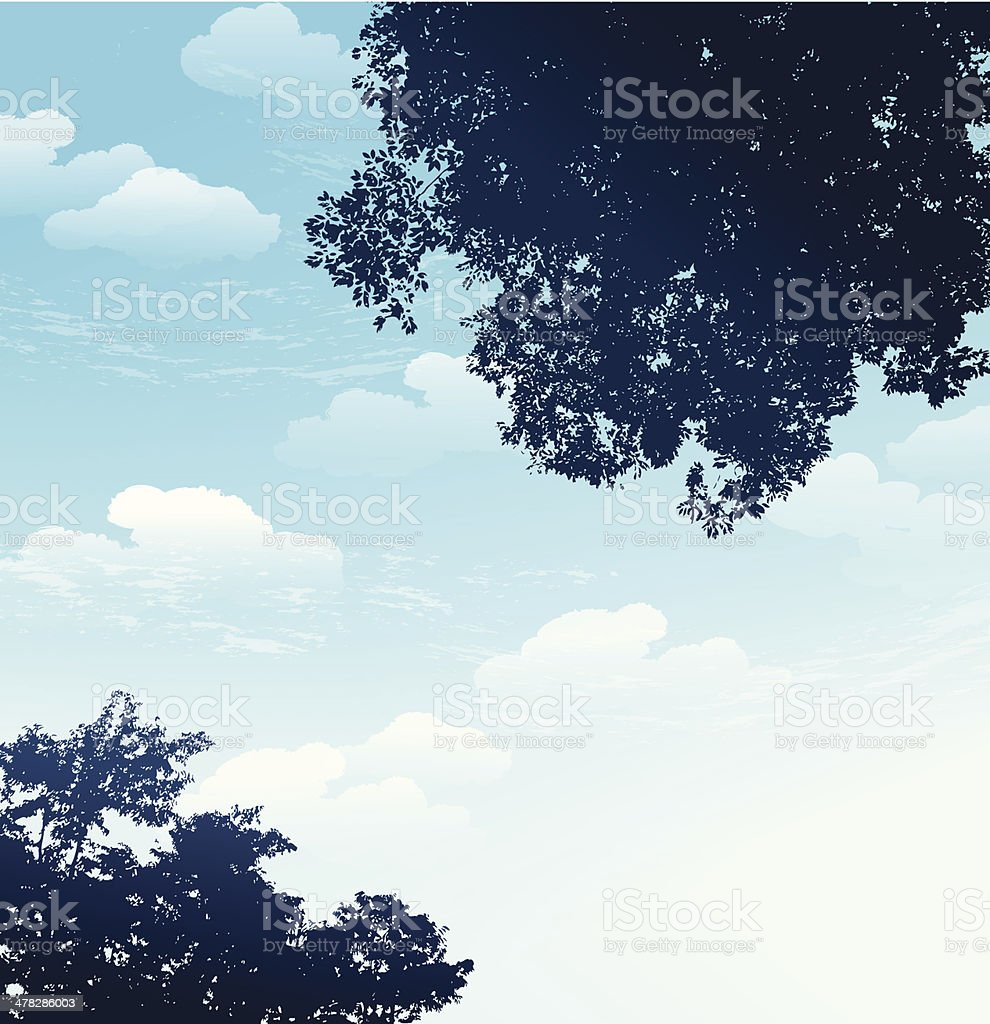 branch silhouette with blue sky background vector art illustration
