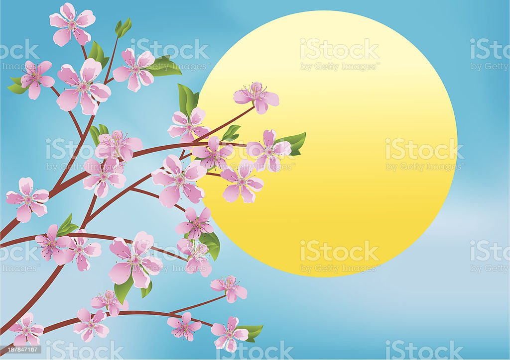 branches and sun royalty-free stock vector art