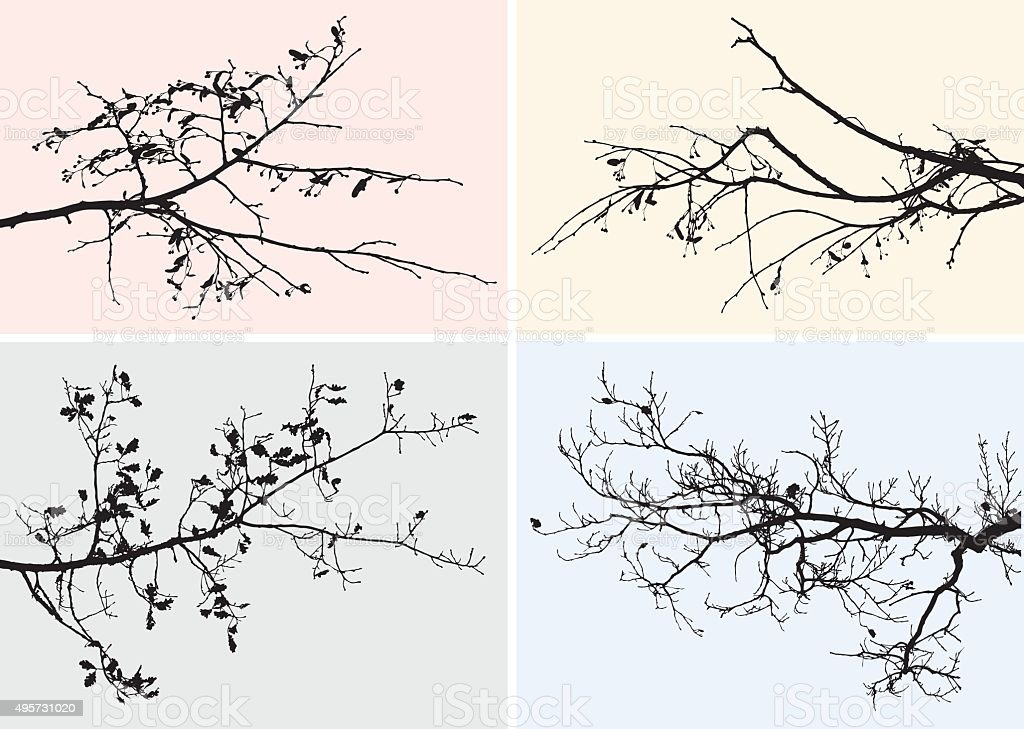 branches of trees in the fall vector art illustration