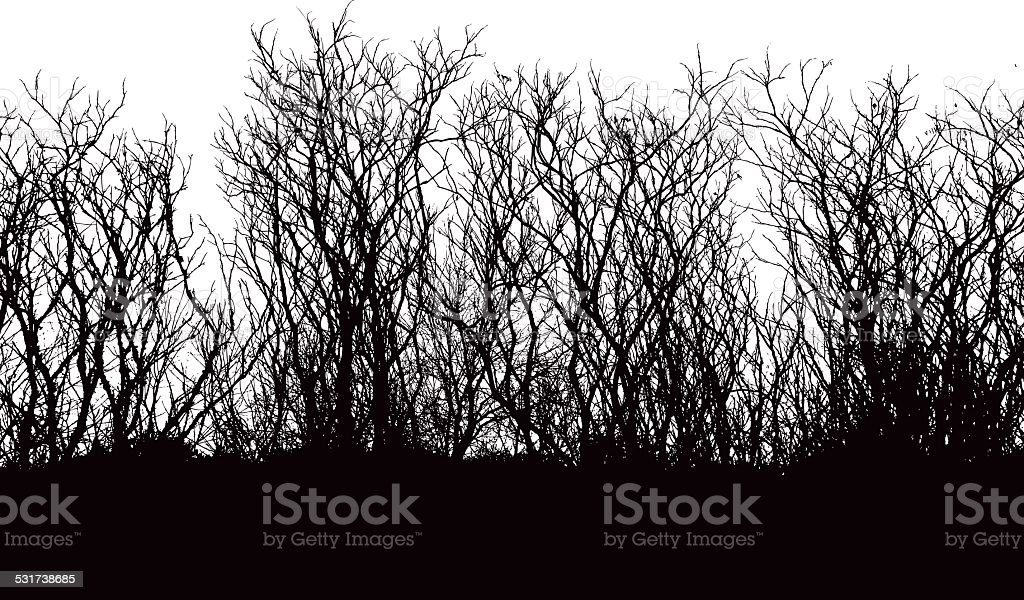 Branches Vector Silhouette vector art illustration