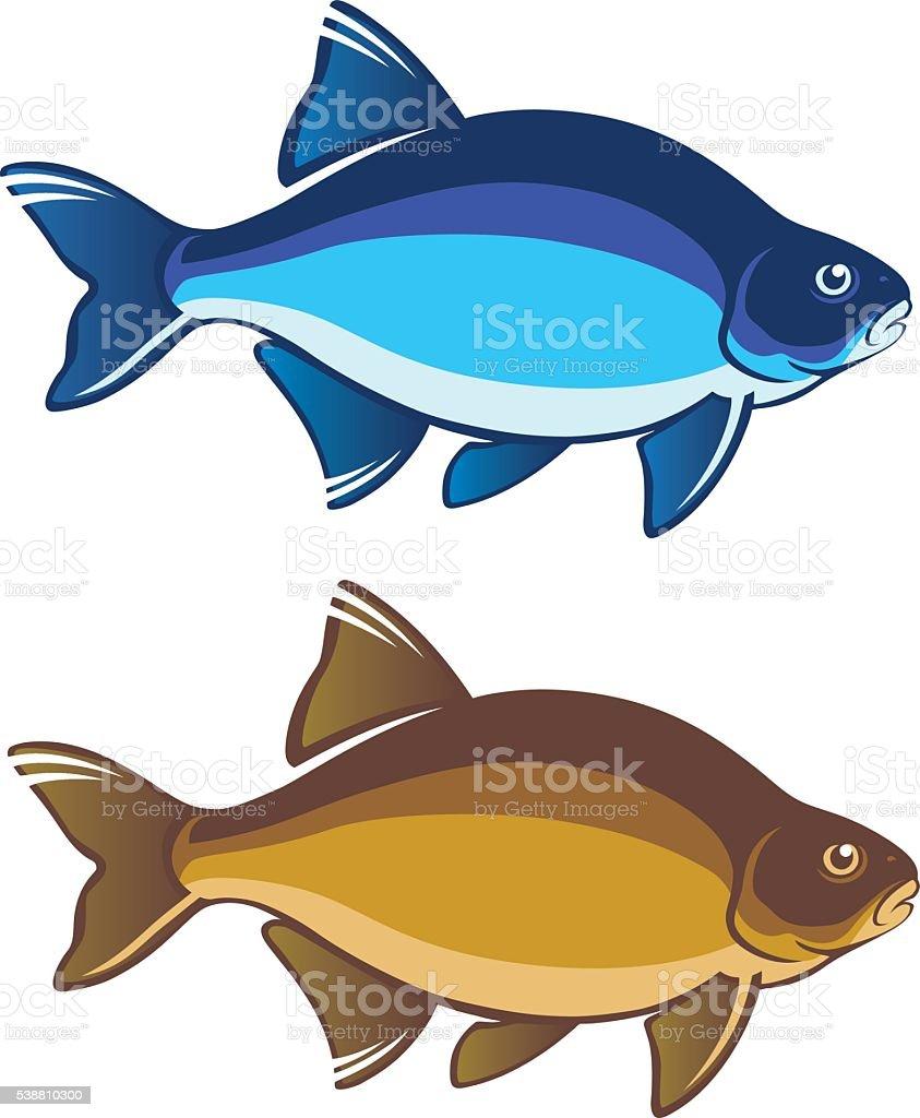 bream fish vector art illustration