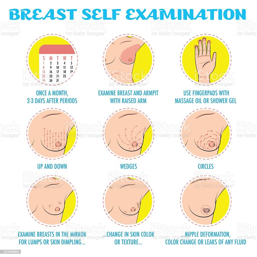 Breast self exam, breast cancer monthly  examination infographic vector art illustration