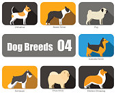 Breeds of dog standing side, vector