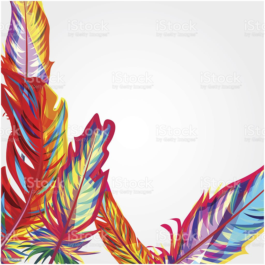 Bright feathers royalty-free stock vector art