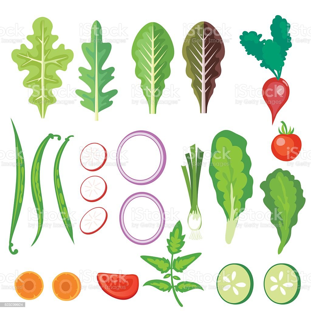 Bright Salad Vegetables vector art illustration