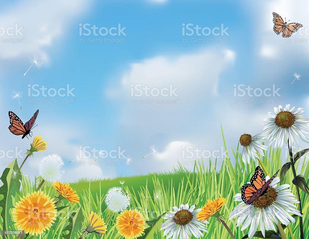 Bright Spring Hillside with Flowers vector art illustration