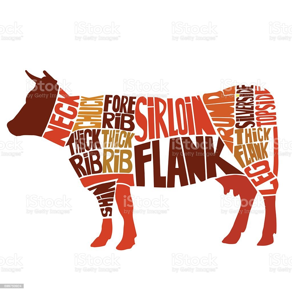 British cuts of beef diagram vector art illustration