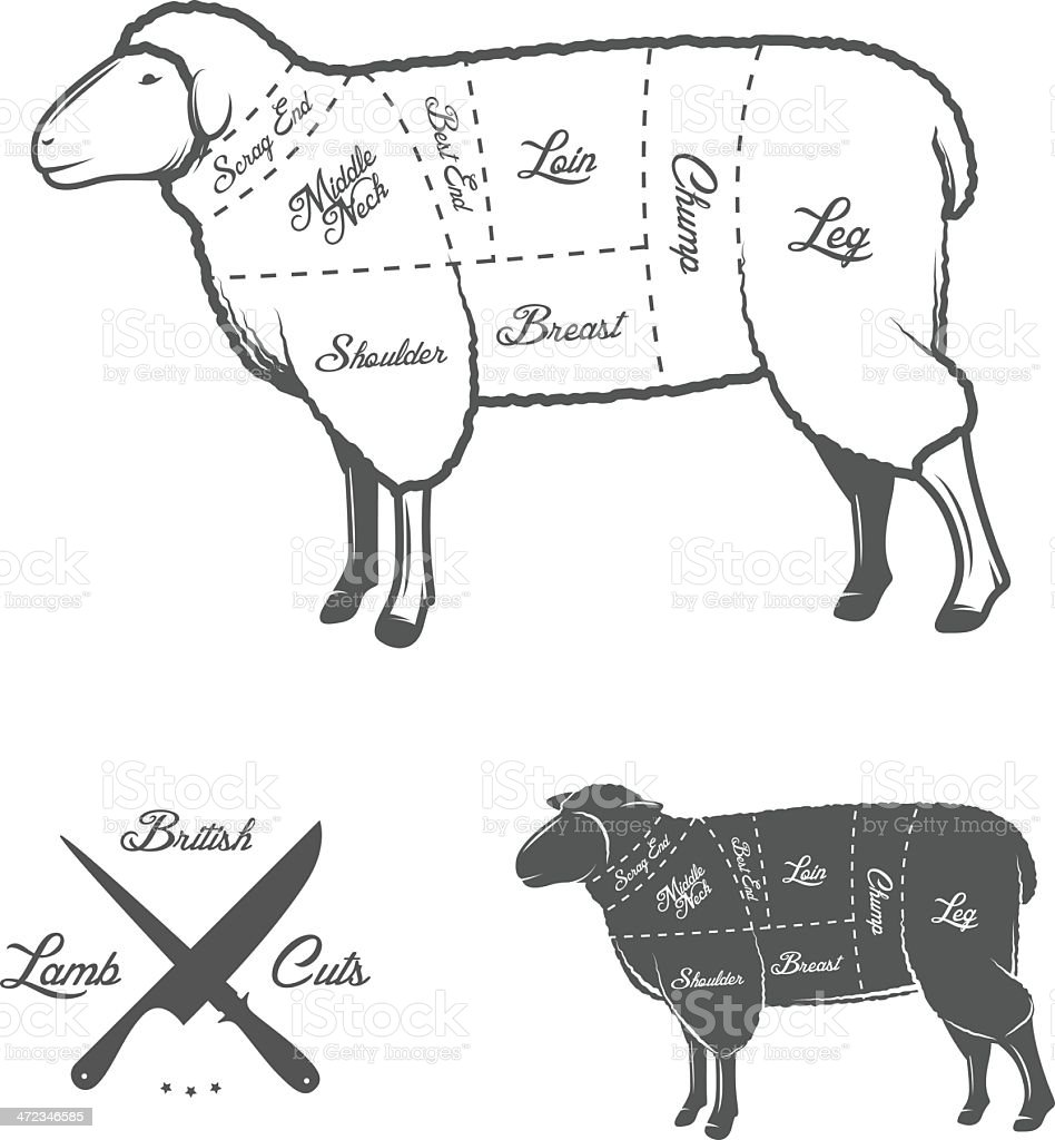 British (UK) cuts of lamb or mutton diagram royalty-free stock vector art