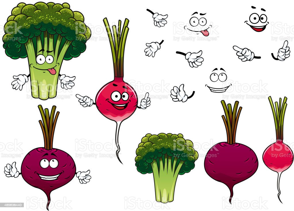 Broccoli, radish and beet vegetables vector art illustration