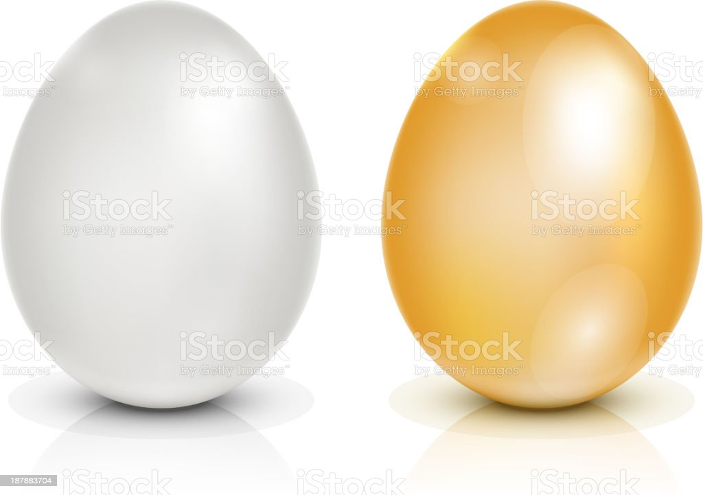 Brown and white eggs vector art illustration