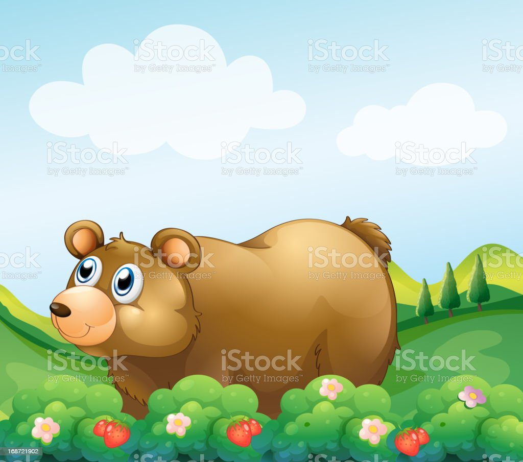 Brown bear in the strawberry garden royalty-free stock vector art