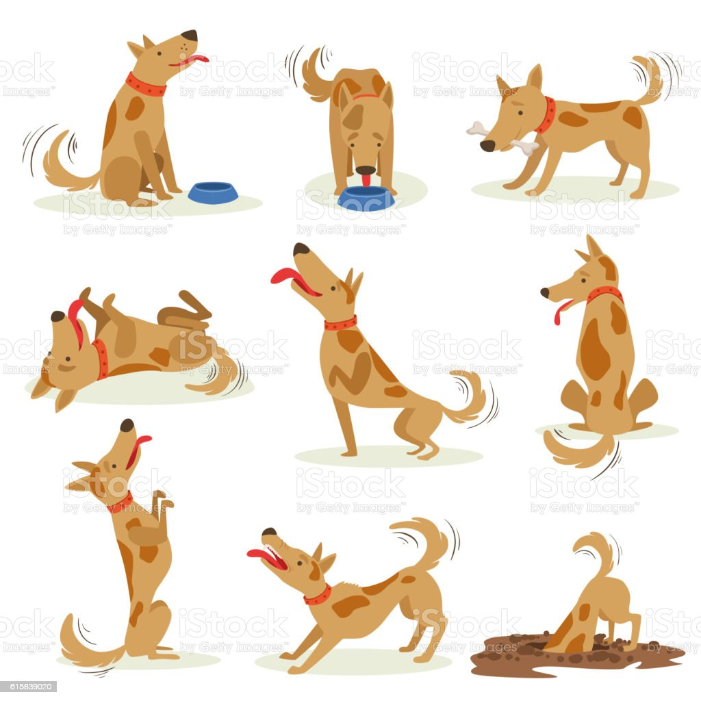 Brown Dog Set Of Normal Everyday Activities vector art illustration
