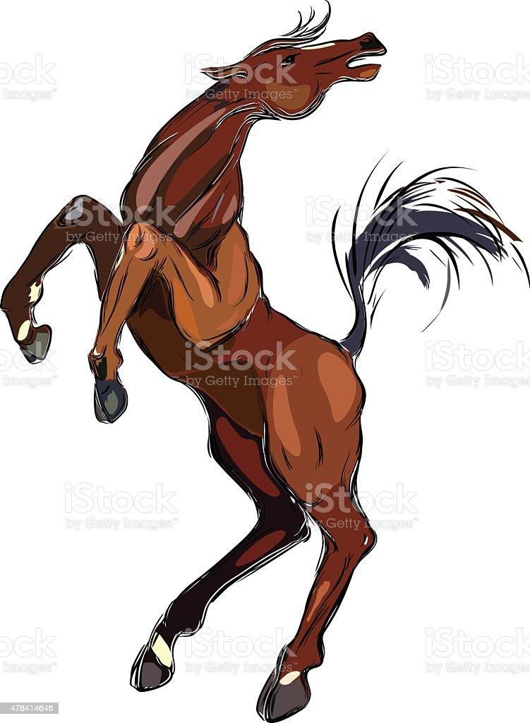 Brown horse vector art illustration
