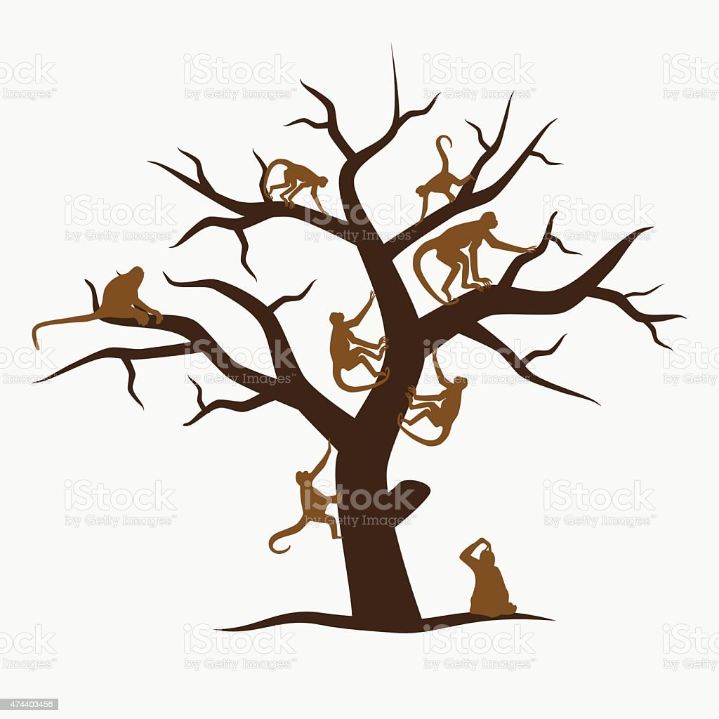 brown monkey tree with a lot of monkeys eps10 vector art illustration