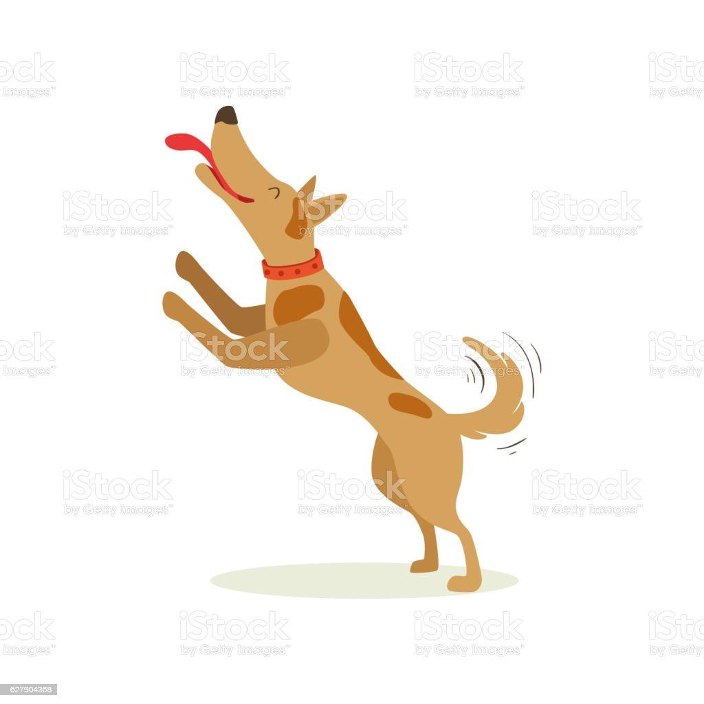 Brown Pet Dog Jumping Licking Face, Animal Emotion Cartoon Illustration vector art illustration