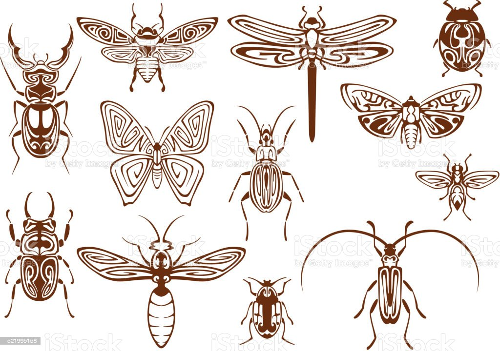 Brown tribal insects for tattoo or mascot design vector art illustration