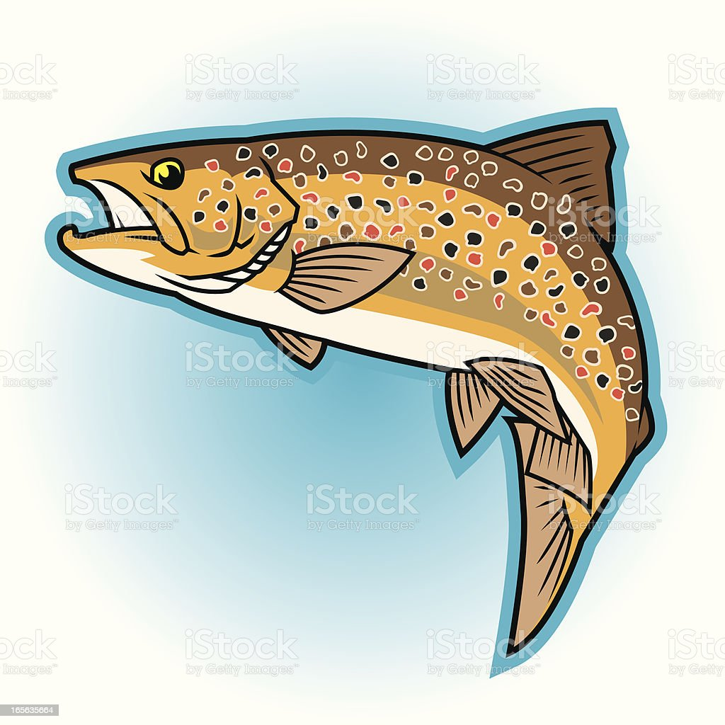 Brown Trout: Full color vector art illustration