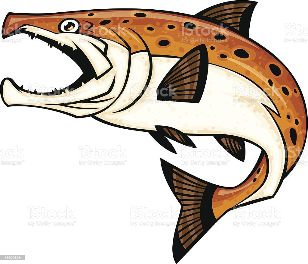 brown trout royalty-free stock vector art