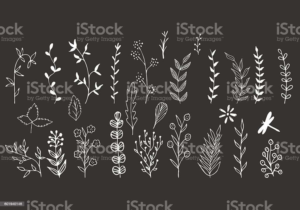 Brunches with leaves vector art illustration